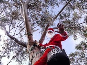Santa arrives_low res