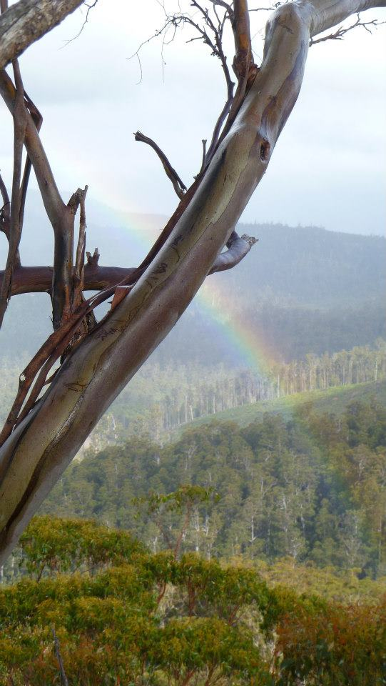 A rainbow over the valley, as the smoke clears after the rain