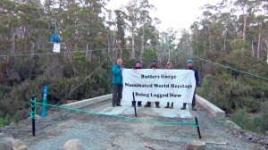 Butlers Gorge banner and tree sit