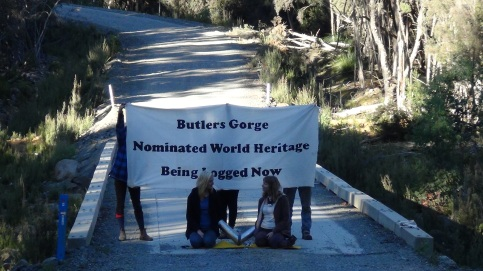 Conservationists block access to logging road in Butlers Gorge